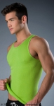 Whittall & Shon Solid Tank Lime