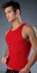 Whittall & Shon Solid Tank Red